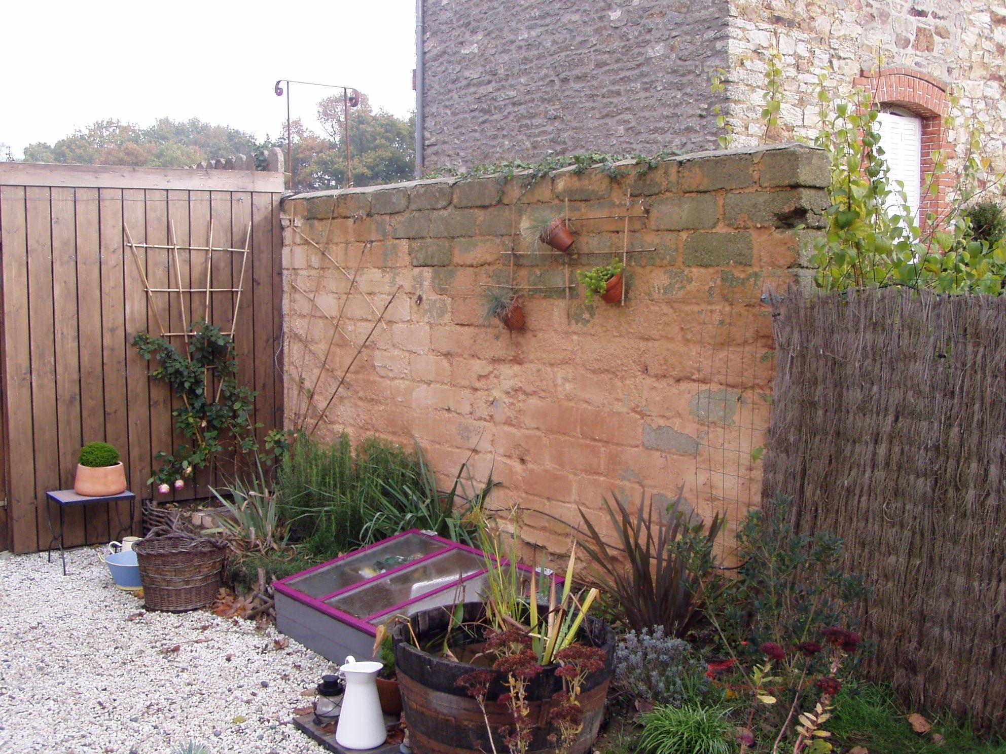 2010 d cembre 11 une vie au jardin - Serre de jardin adossee au mur ...