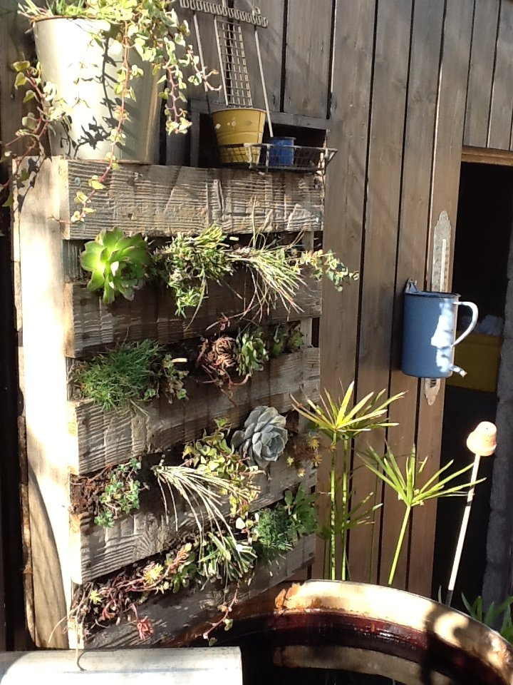 Palette v g tale une vie au jardin for Fabriquer un mur vegetal avec palette