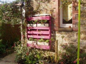 palette jardin p1010234-300x225