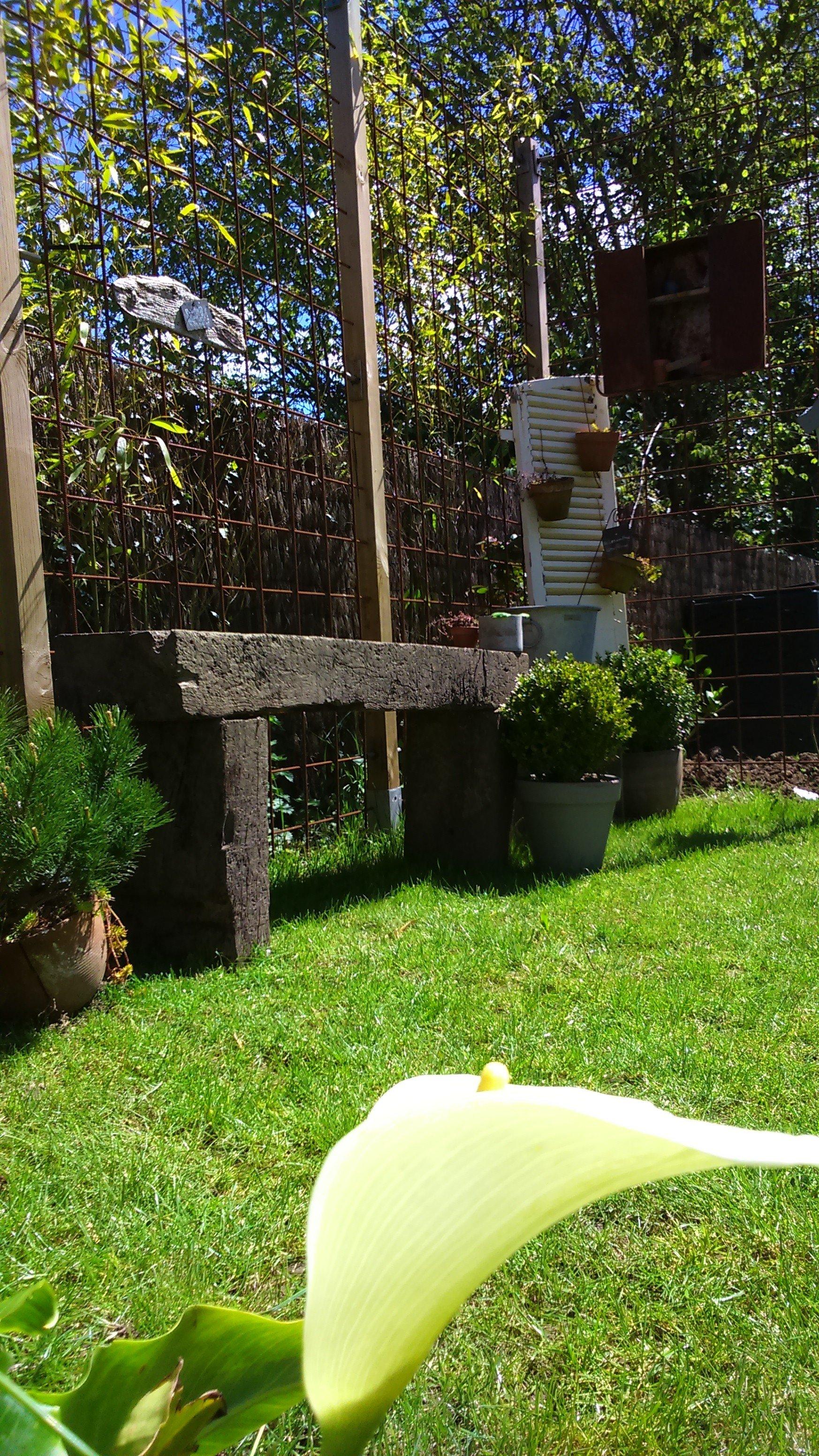 Encore quelques id es une vie au jardin for Jardin encore